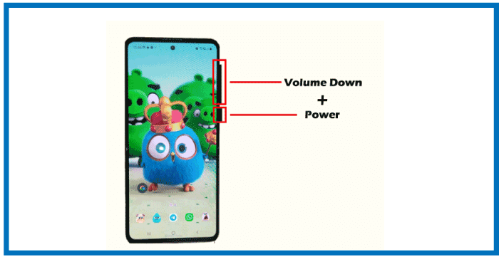 How to Take a screenshot in Android phone