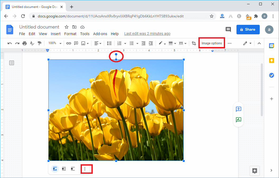 Rotate picture in Google Docs