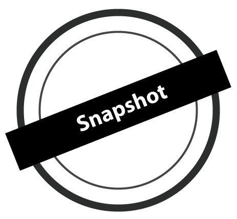 What is Snapshot