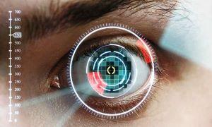 Retina or Iris Scanner