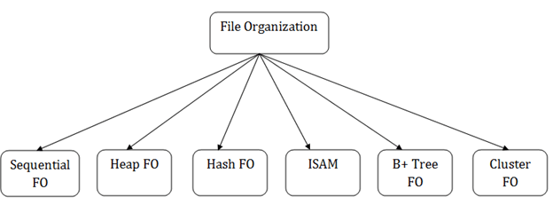 DBMS File Organization