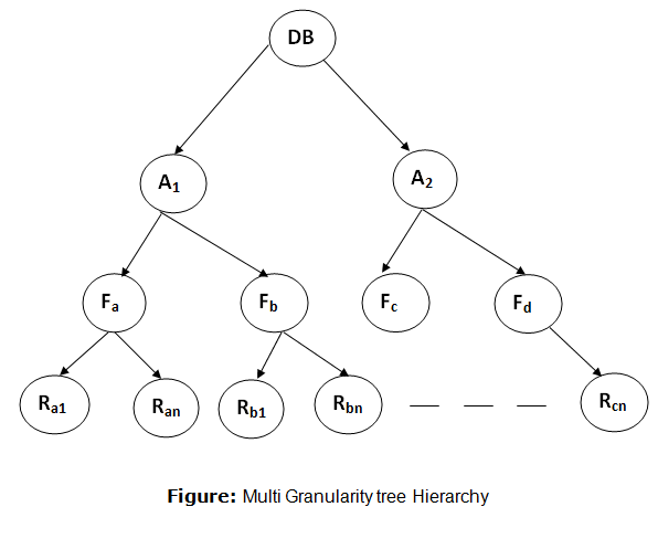 DBMS Multiple Granularity