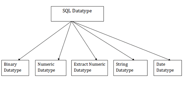 DBMS SQL Datatype