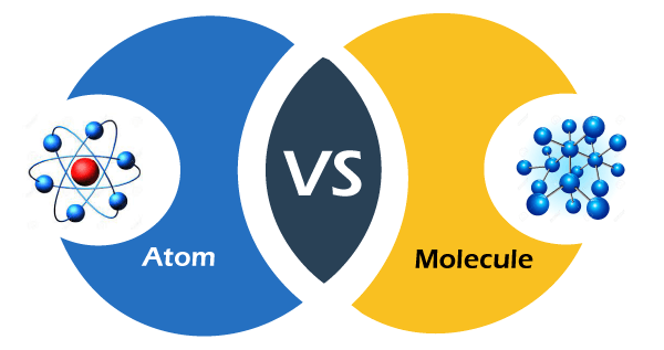 Difference between atoms and molecules