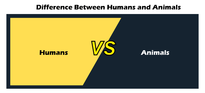Humans vs Animals