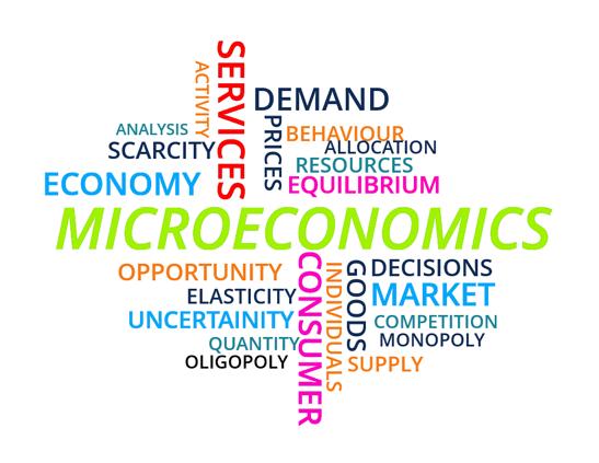 Distinguish Between Micro and Macro Economics