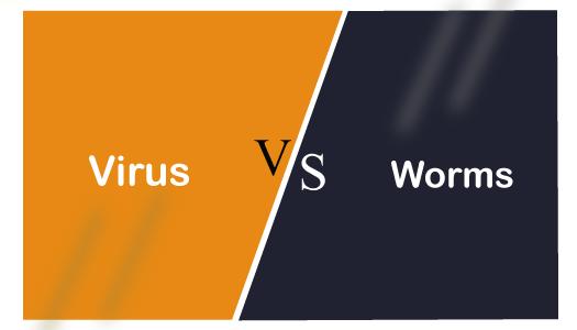 Virus vs Worm