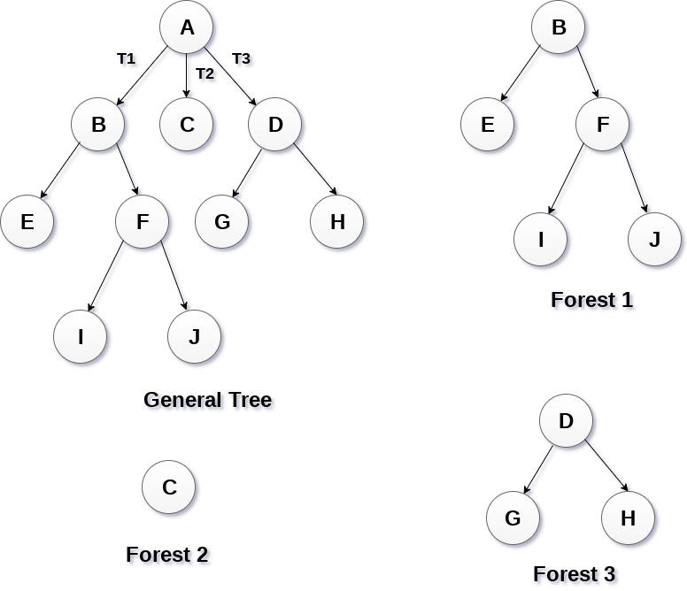 Tree - javatpoint