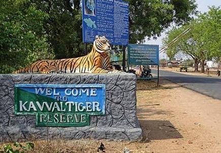 List of Tiger Reserves in India