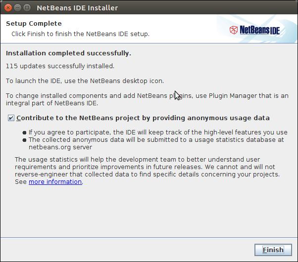 Software Netbeans 11