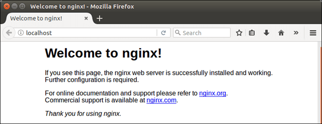 Software NGINX 2