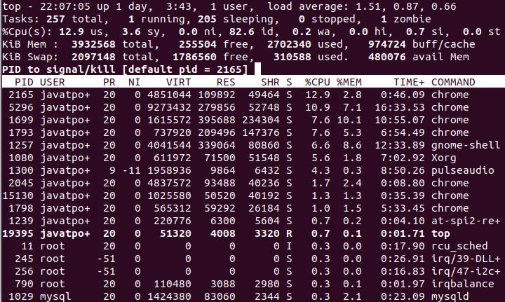 Kill Process Linux