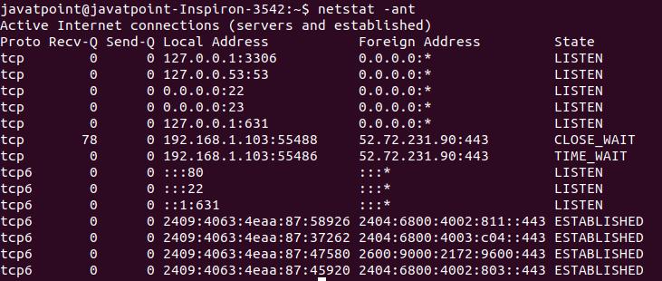 Linux netstat