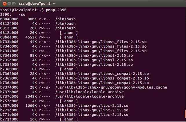 Linux pmap1