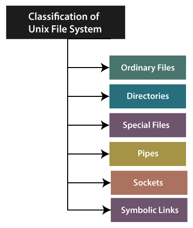 Types of Files in Unix