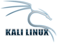 Best Operating System for Hacking