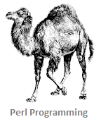 Perl Programming Tutorial