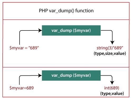 PHP var_dump() function