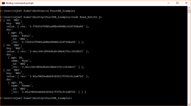 PouchDB Delete batch 1