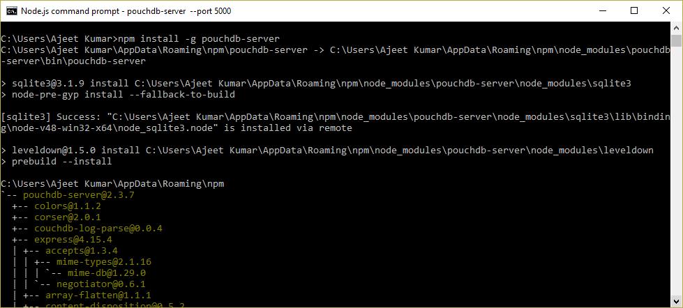 PouchDB Install 4
