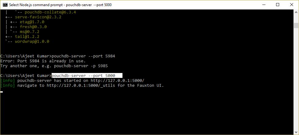 PouchDB Install 5