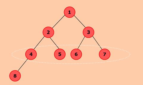 Program to find maximum width of a binary tree