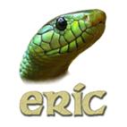 Python IDEs