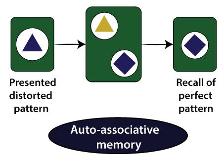 Associate Memory Network