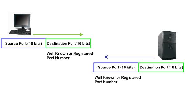 TCP Port