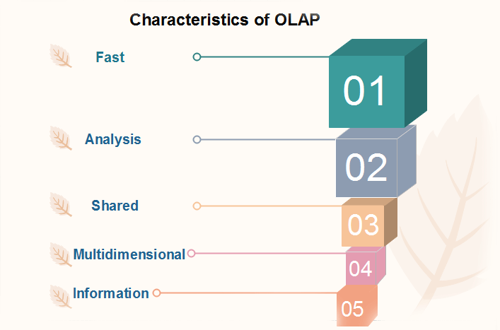 What is OLAP