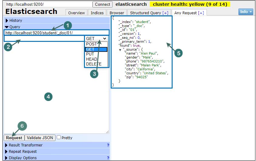 Elasticsearch Plugin