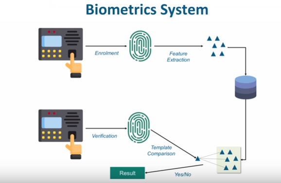 Internet of Things (IoT) in Biometrics Domain
