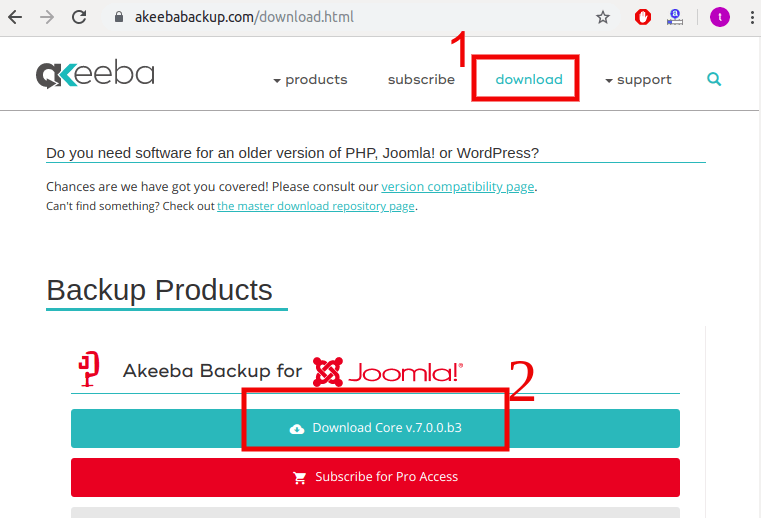 Joomla Website Backup