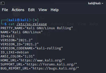 How to Check Kali Linux Version
