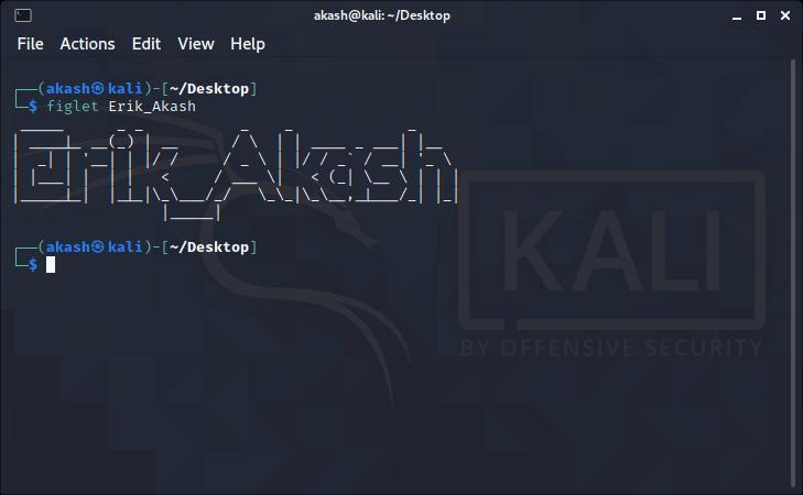 Kali Linux - Terminal