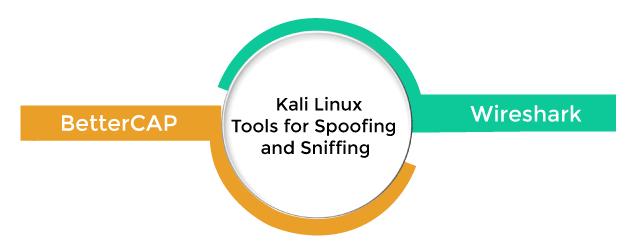 Kali Linux Tools List