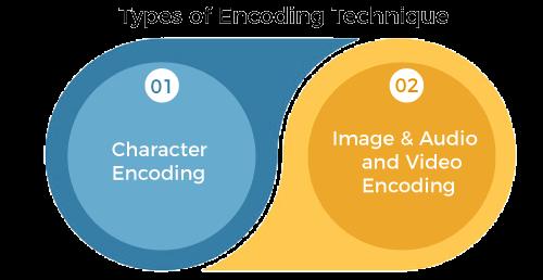 Types of Encoding Techniques