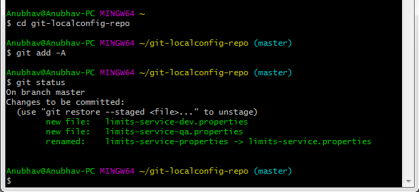 Connect Spring Cloud Config Server to Local Git Repository