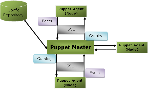 Puppet Architecture