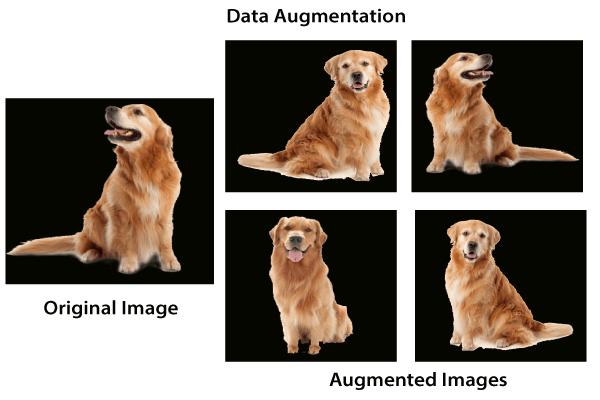 Data Augmentation Process