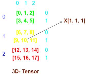 Two Dimensional Tensor