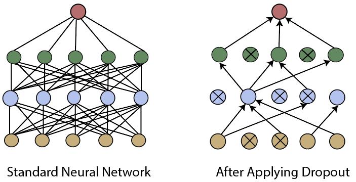 Validation of Convolutional Neural Network Model - javatpoint