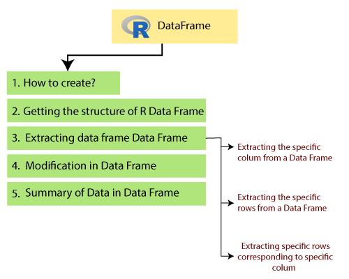 R Data Frame