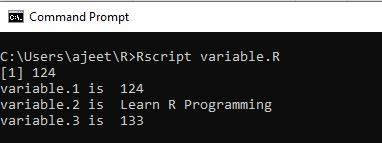 R Programming Variables