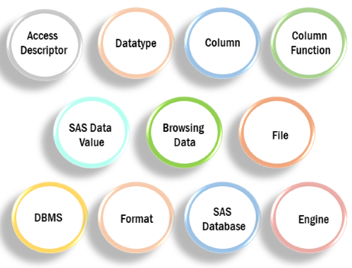 SAS Terminology