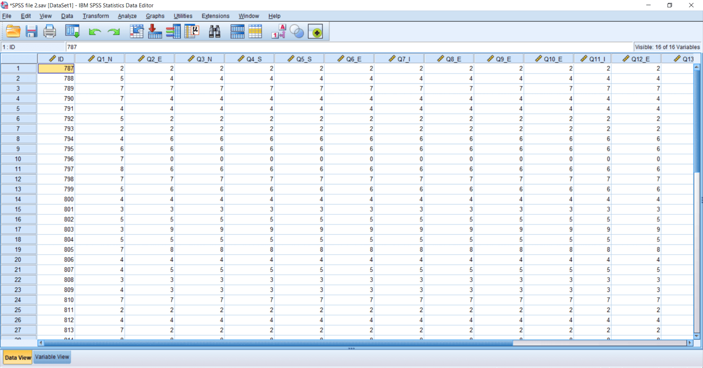 SPSS Recode Variable