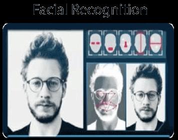 TensorFlow Object Detection