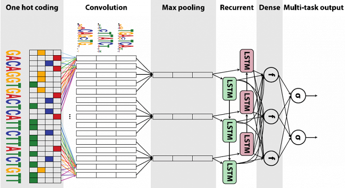 Training of RNN in TensorFlow