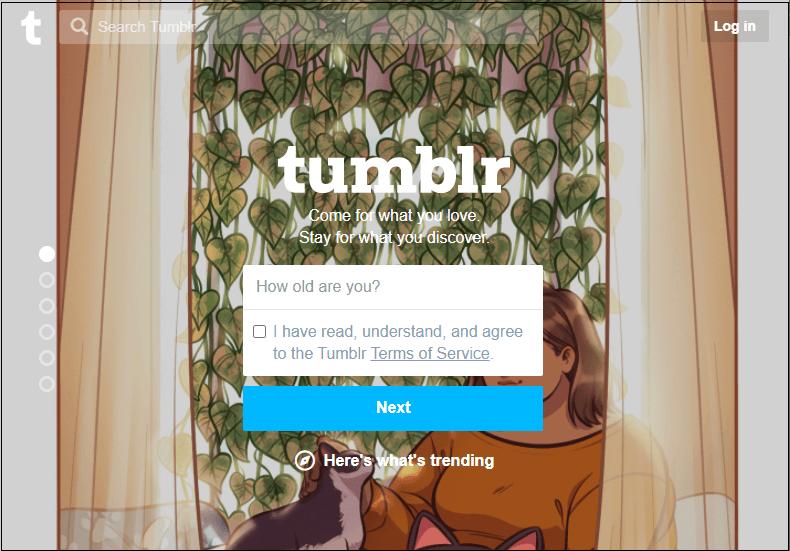 Tumblr Tutorial
