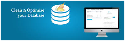 Wordpress How to optimize wordpress performance8